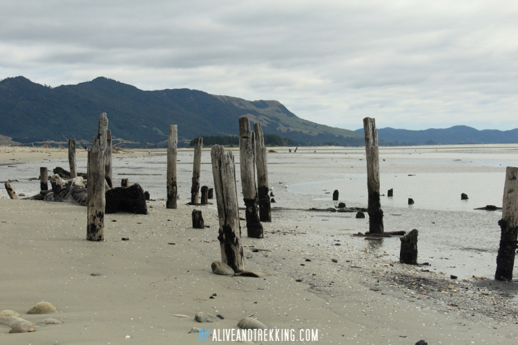 collingwood_beach