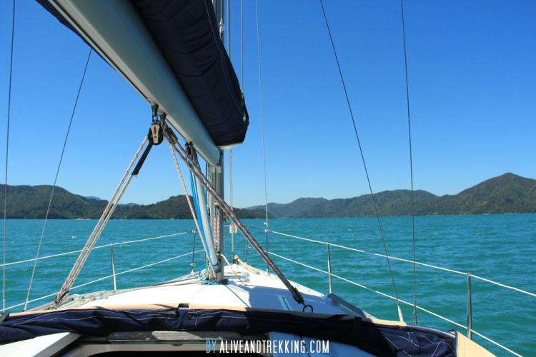 hopewell-sailing