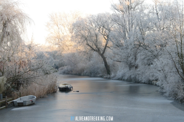 nl_winter